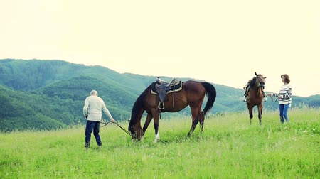 dospělí : A senior couple holding horses grazing on a pasture.
