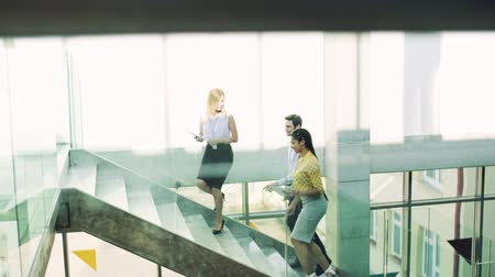 escada : Group of businesspeople walking up the stairs in the modern building, talking. Stock Footage