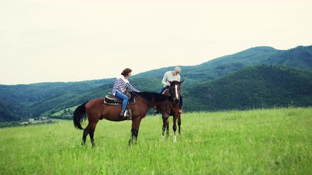 вести : A senior couple sitting on horses on a meadow, talking.