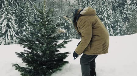 piŁa : Senior man with a hand saw getting a Christmas tree in forest.