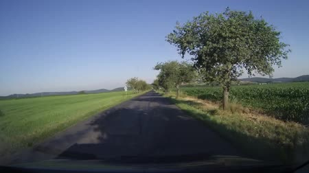 gösterge paneli : Driving the country road, captured on dash cam in the car. Stok Video