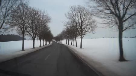 řídit : Point of view clip shooted on dashcam in car during driving on rural road along the snowy field at winter. POV clip.