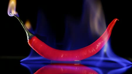 pieprz : Burning hot Chilli pepper with flame on black mirror background