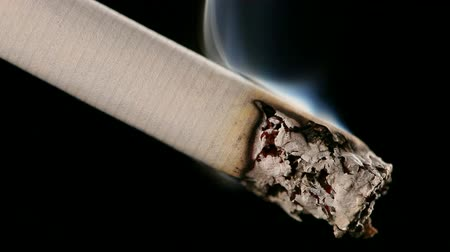 ardente : Macro view of burning cigarette with smoke on black.
