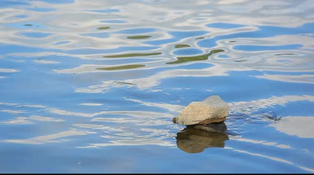 ribeiro : Small stone island on river water surface with ripples Stock Footage