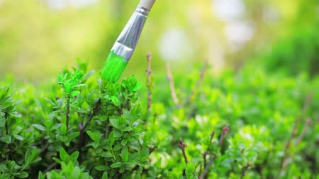 okşamak : Painting green grass with brush, ecological funny concept