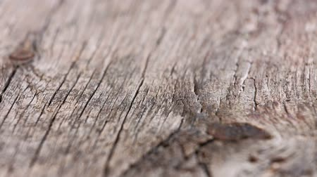 holz hintergrund : Old Holzbrett vintage background, Schiebe-Video