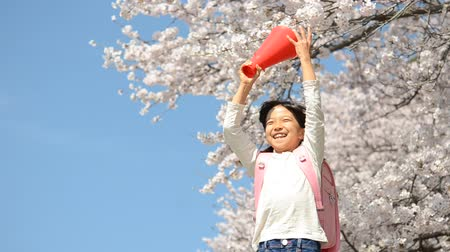 flower : Girls cheer megaphone Stock Footage