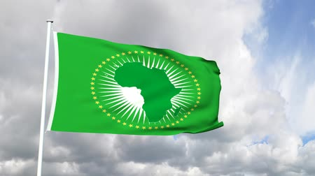 malawi : Flag of the African Union Stock Footage
