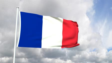 francja : Flag of France Wideo