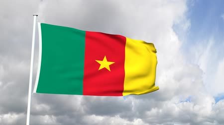чад : Flag of Cameroon Стоковые видеозаписи