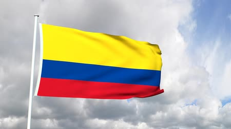 bogota : Flag of Colombia Stock Footage