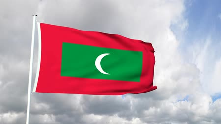 Мальдивы : Flag from the Maldives