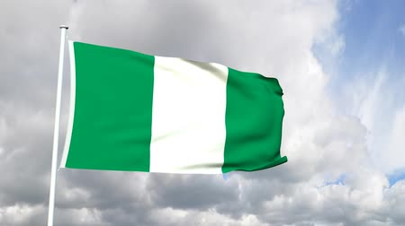 nigeria flag : Flag of Nigeria