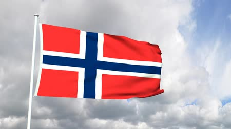 norvégia : Flag of Norway Stock mozgókép