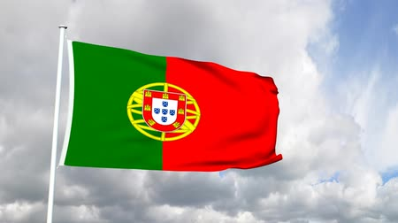 lisboa : Flag of Portugal Vídeos