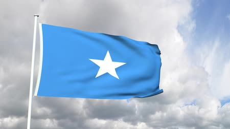 pirat : Flag of Somalia Wideo