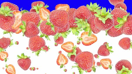 çilek : Falling strawberries (ends on blue) Stok Video
