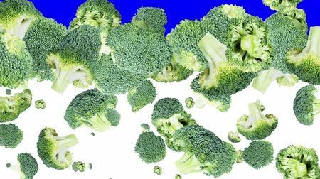 brocoli : Vallende Broccoli met overgang Stockvideo