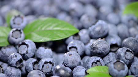 jagody : Heap of fresh Blueberries (not loopable full HD video)