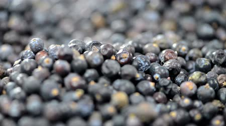 spices : Juniper Berries Background (loopable) Stock Footage