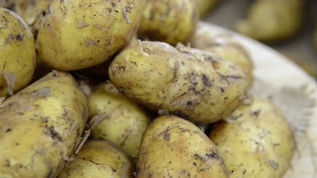 ve slupce : Portion of fresh Potatoes (loopable full HD video)