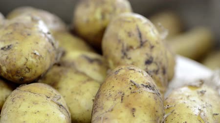 patate : Porzione di patate (video loopable)