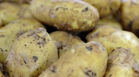 brambory : Portion of Potatoes (loopable video)