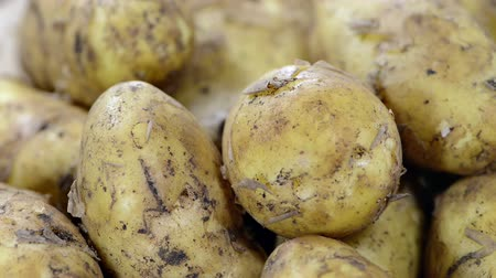 ve slupce : Heap of Potatoes (loopable full HD video)