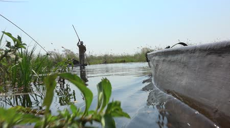 Safari into the Okavango Delta (Botswana) as 4K UHD footage