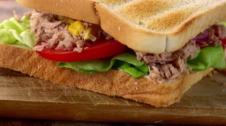 mayonez : Rotating Tuna Sandwich (seamless loopable 4K UHD footage) Stok Video