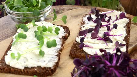 twarożek : Rotating Cream Cheese and Cress on a slice of Bread (seamless loopable 4K UHD footage) Wideo