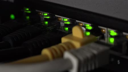 banda larga : Network switch with blinking LEDs as detailed 4K footage (close-up) Vídeos
