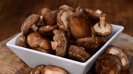 shiitake : Raw Shiitake mushrooms seamless loopable (4K UHD)
