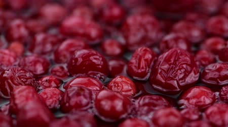 kızılcık : Portion of preserved cranberries in 4K (rotating, seamless loopable)
