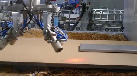 zaagsel : Houtbewerking in een CNC-machine Stockvideo