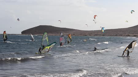 many surfers : Group windsurfer at beach - windsurfing and kitesurfing people at beach Playa El Medano, Tenerife, Spain Stock Footage