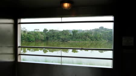 water rail : driving train in jungle landscape next to panama canal