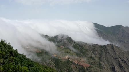 clouds passing mountain range landscape, Tenerife - forest mountain landscape above clouds
