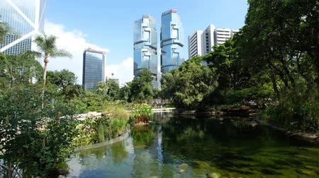 metropolitan area : The Hong Kong Park with lake and skyscrapers buildings in background in HongK Stock Footage