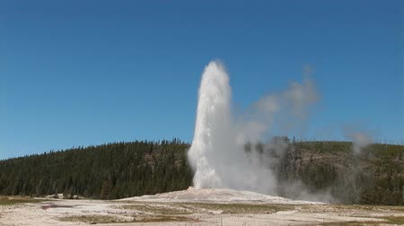 geiser : Old Faithful in het Nationaal Park Yellowstone