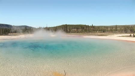 touristes : Arc-en-Piscine Parc national de Yellowstone Vidéos Libres De Droits