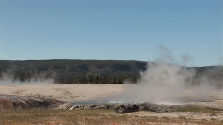 erupt : Small geyser in Yellowstone National Park