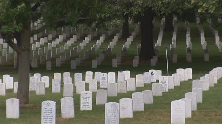 donanma : Arlington National Cemetery