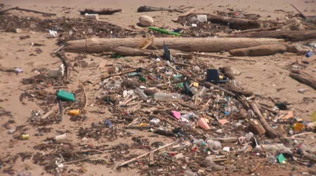 odpadky : Polluted beach