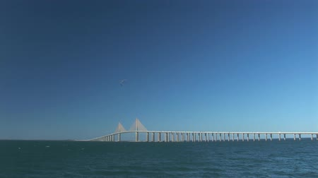 tampa bay : The Bob Graham Sunshine Skyway Bridge - Tampa Stock Footage