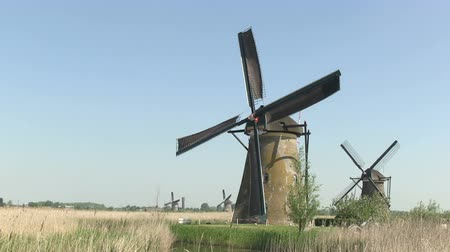 holandês : Dutch windmills near Kinderdijk, The Netherlands Stock Footage