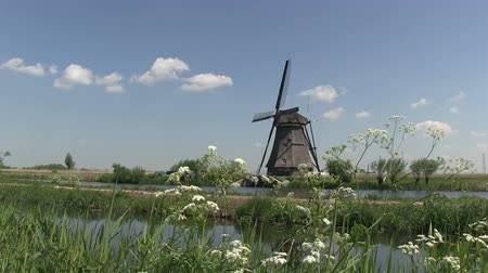 голландский : Dutch windmill near Kinderdijk, The Netherlands Стоковые видеозаписи