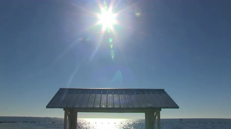 piknik : The roof of a picnic table at the beach in Florida Stok Video
