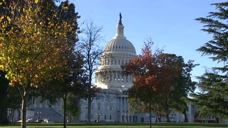 politikacı : The US Capitol on Capitol Hill in Washington, DC Stok Video